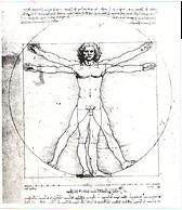 Formation en anatomie appliquée au yoga, Formation en anatomie appliquée au yoga